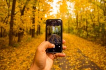 fall photo.jpg