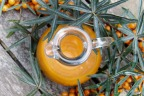 What is Sea Buckthorn and how can it improve your health?